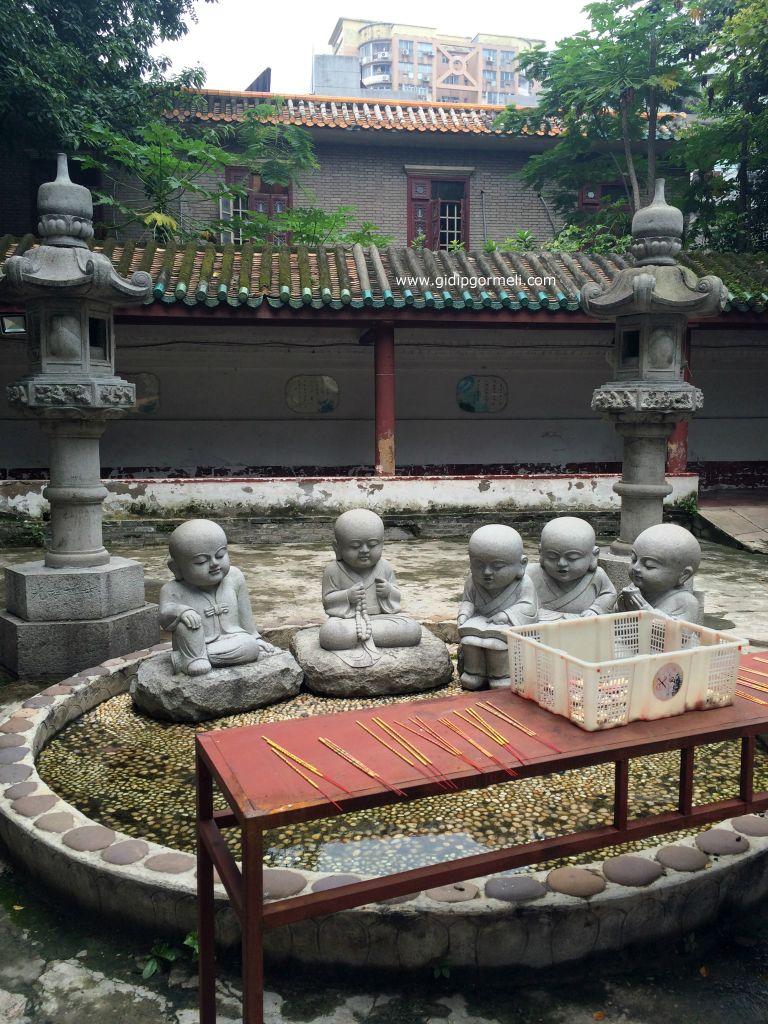 Guangxiao 3
